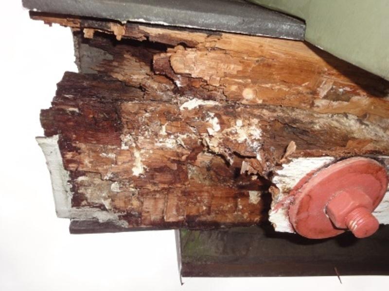 Holz am Mühlenflügel zerstört