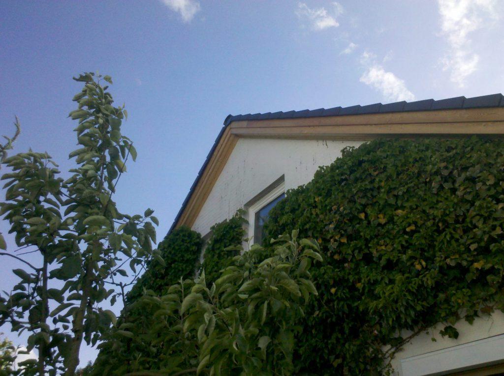 Detailansicht Dachüberstand